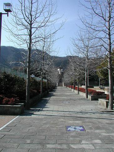 上対馬総合運動公園
