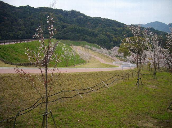 山の田ダム環境整備